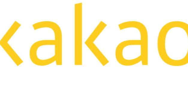 카카오게임즈-모빌리티 협업, '게이미피케이션' 자회사 설립