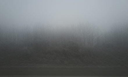 어둠을 찍는다 라이카 Q2 , 윤광준 작가의 말