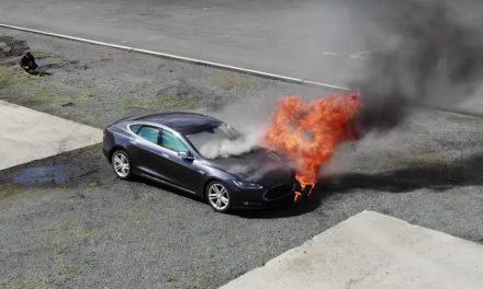 테슬라 주식이 불타고 있다