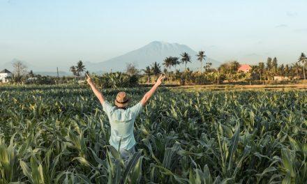 '인디고 애그리컬처'는 어떻게 농업분야 첫 유니콘이 됐을까?