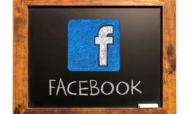 뉴스 서비스 중단한 페이스북 vs 사용료 지불한 구글